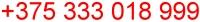 переводчик Минск английский телефон Беларусь, переводчик английского, устный перевод, устный переводчик, синхронный переводчик, последовательный переводчик, нотариальный переводчик, английский-русский, русский-английский, с английского на русский, с русского на английский, без посредников, фрилансер, частный, нал, безнал, срочно, МТС, MTS